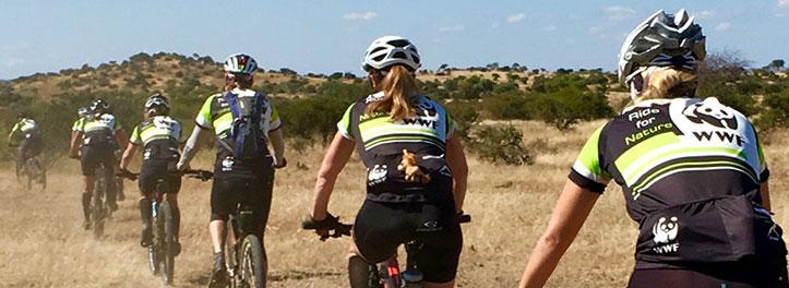 Mountain Bike Safari Team Building
