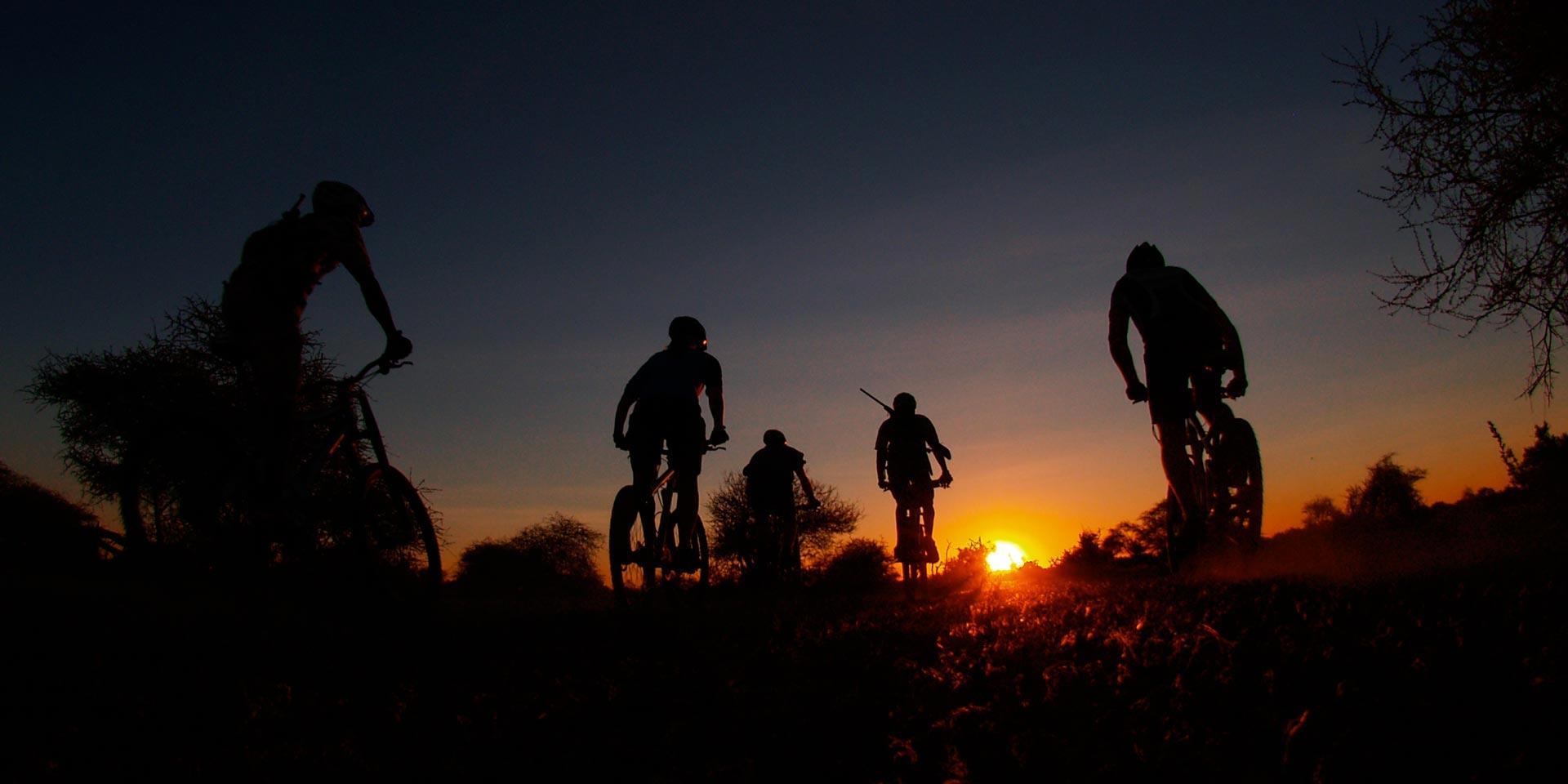 Mountain-bike-safari